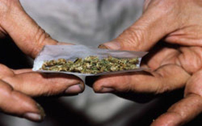 Una farmacia que venderá cannabis • Archivo